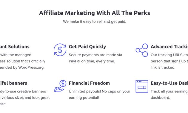 program affiliate marketing hosting dan domain