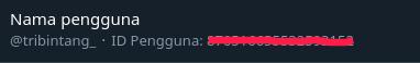 Mendapatkan dan Mengetahui User ID Twitter
